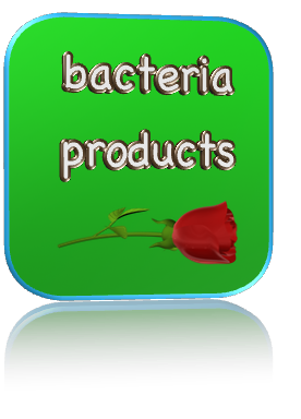 bacteria products