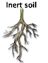 Inert soil